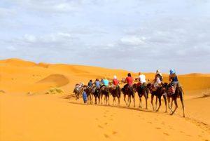 1-night-camel-trekking desert
